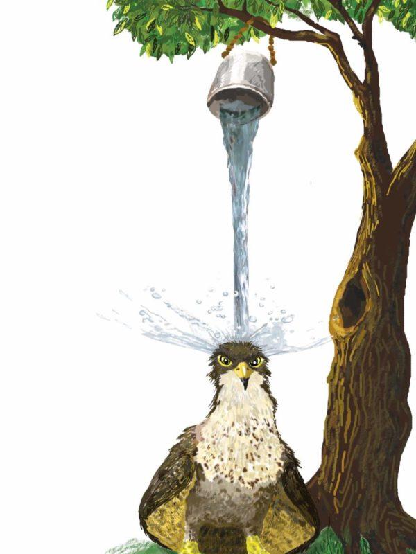 Na orła wylewa się wiadro zimnej wody