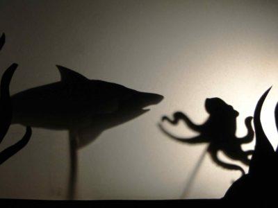 Morski teatrzyk cieni