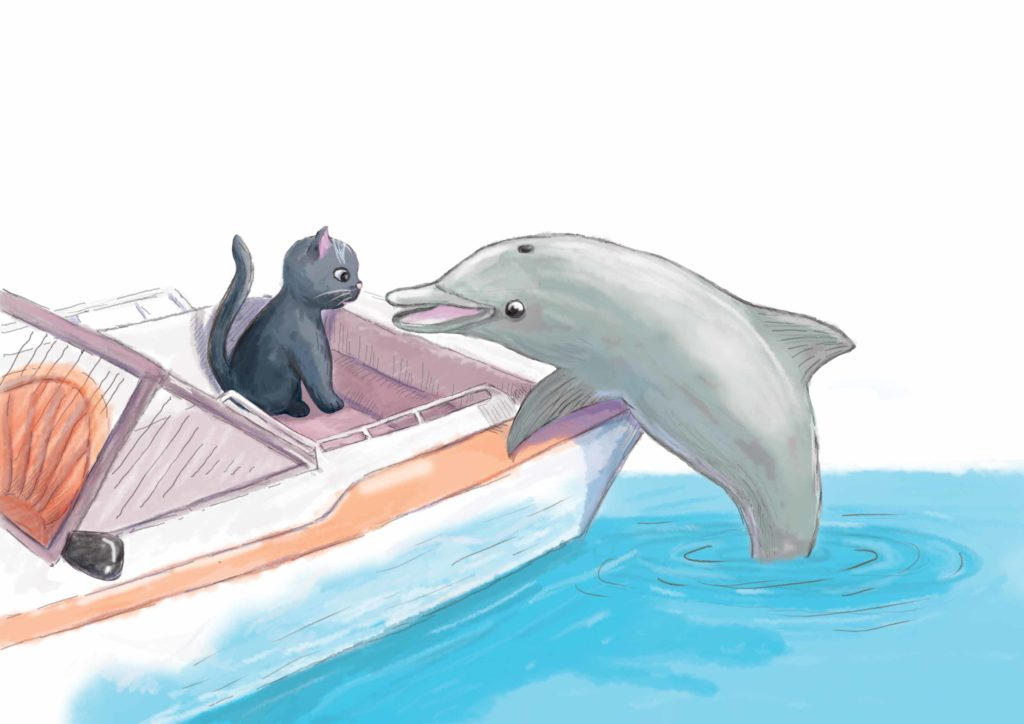 delfin zagląda do kotka siedzącego w motorówce