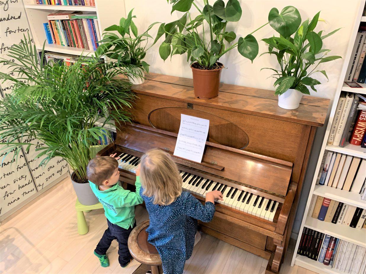 """Piosenka """"Drzewa to zdrowie"""""""
