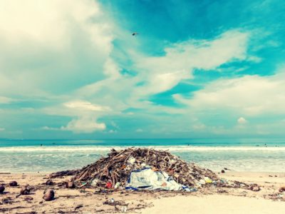 Waste in the environment – find them with us!