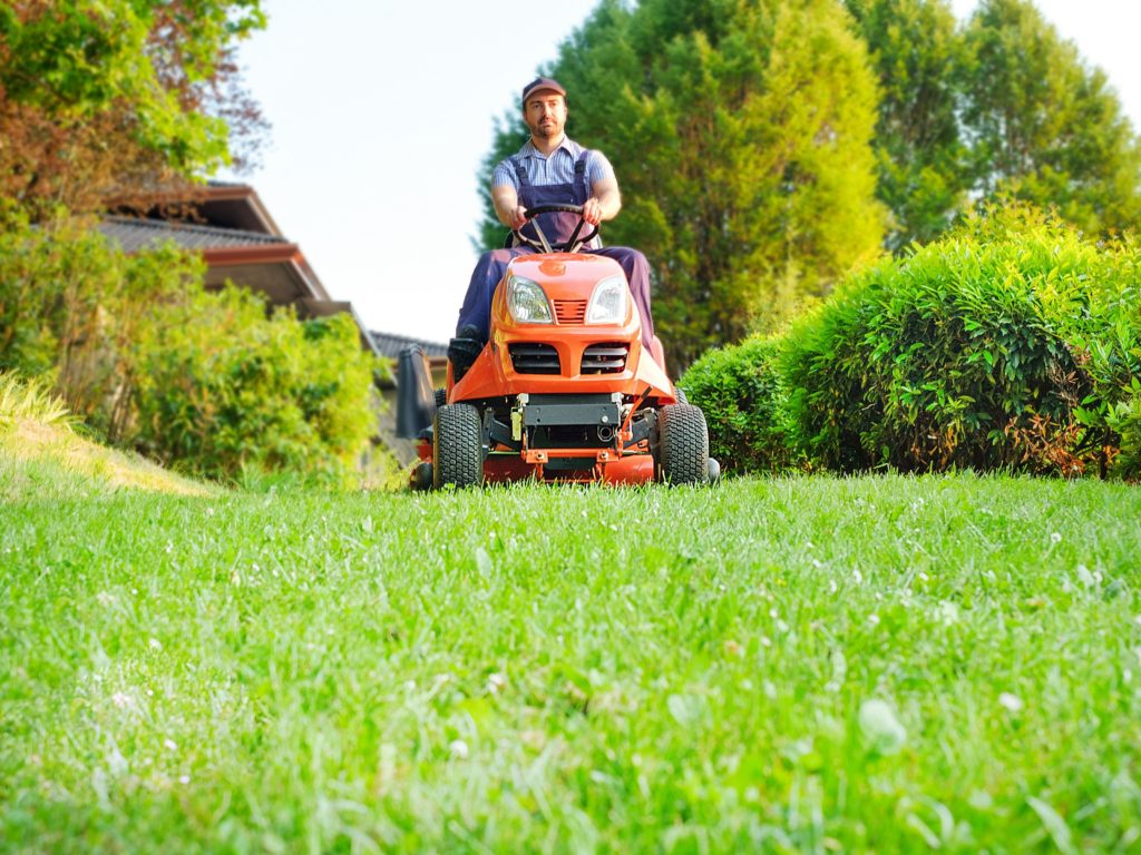 Mowing on the meadow