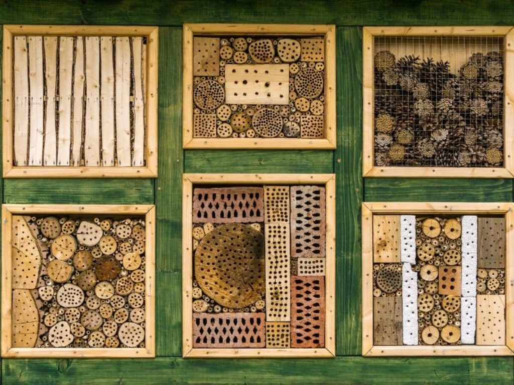 Make an insect hotel with the children
