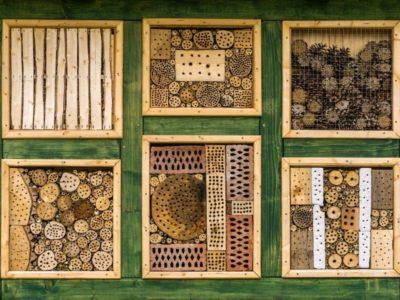 Zbudujmy razem hotel dla pszczół